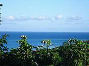 Another one of the beautiful views from this property, also the breezes from the top of this hillside are very nice...