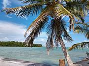 view from the dock at Catfish Bight: 297 acres of prime seafront land..