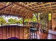 Jungle treehouse by the sea..